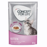 Concept for Life Kitten - in Soße - 12 x 85 g
