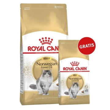 royal canin norwegische waldkatze 10kg 2kg gratis preisvergleich. Black Bedroom Furniture Sets. Home Design Ideas