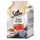 Sheba Fresh & Fine Herzhafte Komposition Multipack 6x50g