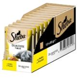 Sheba Katzenfutter Delikatesse in Gelee Huhn - 12x85g