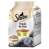 Sheba Katzenfutter Fresh & Fine Feine Vielfalt mit Gemüse Multipack - 6er Multipack